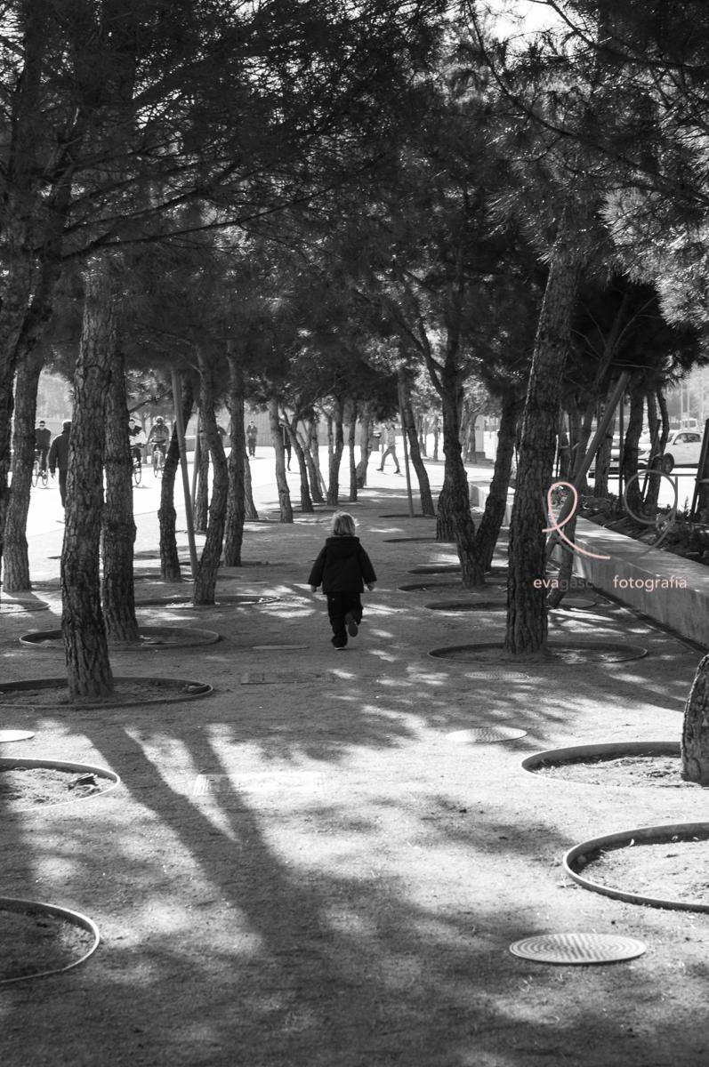 MadridRio-Entre pinos